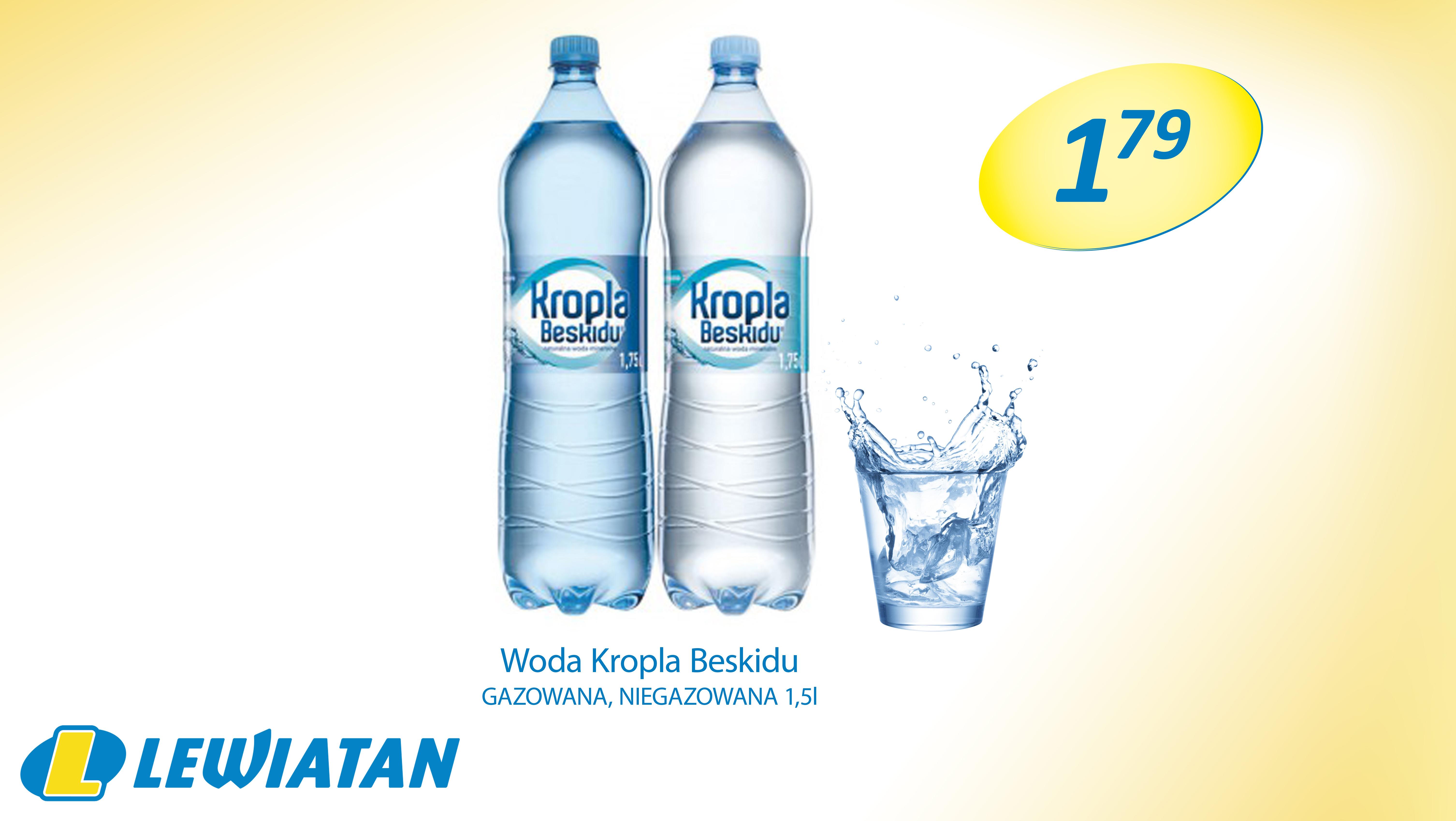 KROPLA-BESKIDU-15L-179